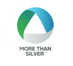 More Than Silver logo for web